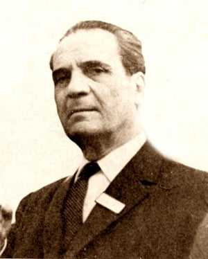 Vladimir Streinu